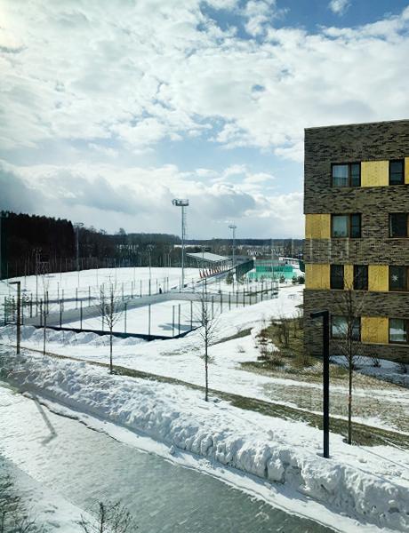 Стадион на открытом воздухе школы «Летово», аналогов которой нет в России